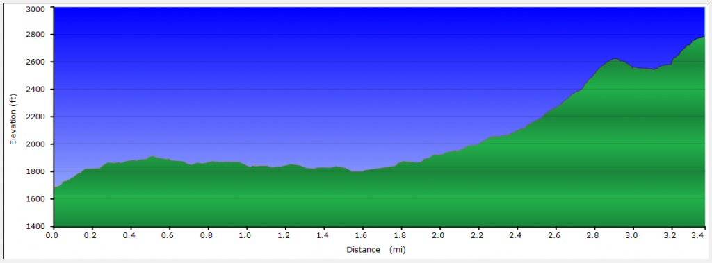 Owl's Head Mountain Trail Elevation Profile
